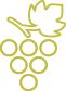 uvas-blanco-lexitimo